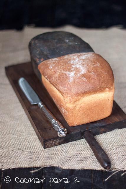 pan bicolor