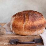 Pan de cerveza en cocotte